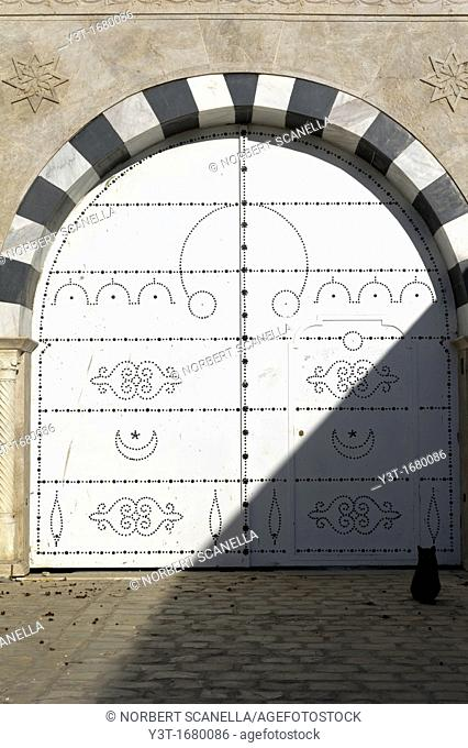 North Africa, Tunisia, Sidi Bou Said. A cat front of typical traditional Tunisian door