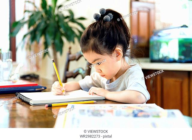 Little girl studying at home