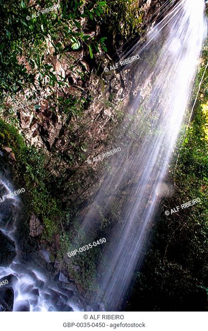 Macuco Safari; trail through the interior of the forest; Foz do Iguaçu; PR; Paraná; Brazil