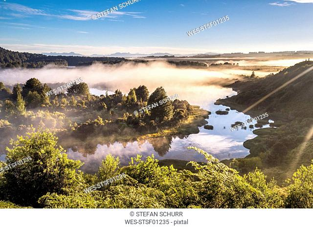 New Zealand, South Island, Southern Scenic Route, Fiordland National Park, fog at Lake Manapouri