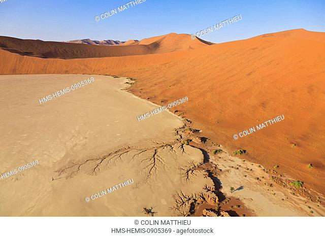 Namibia, Hardap region, Namib desert, Namib-Naukluft national park, Namib Sand Sea listed as World Heritage by UNESCO, near Sossusvlei sand dunes, Deadvlei