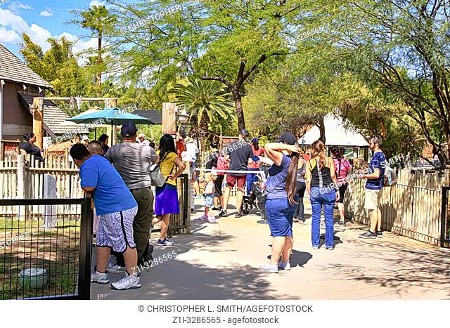 People enjoying all the attractions at Reid Park Zoo in Tucson AZ