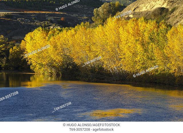 River Ebro in San Vicente de la Sonsierra. La Rioja. Spain.. La Rioja. Spain