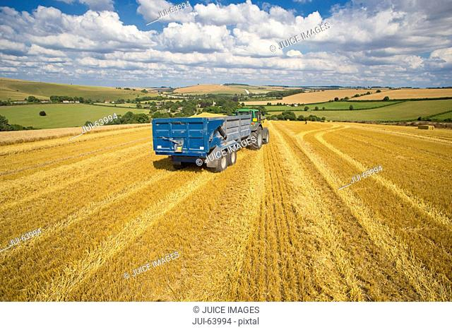 Green tractor pulling trailer full of wheat in sunny rural field