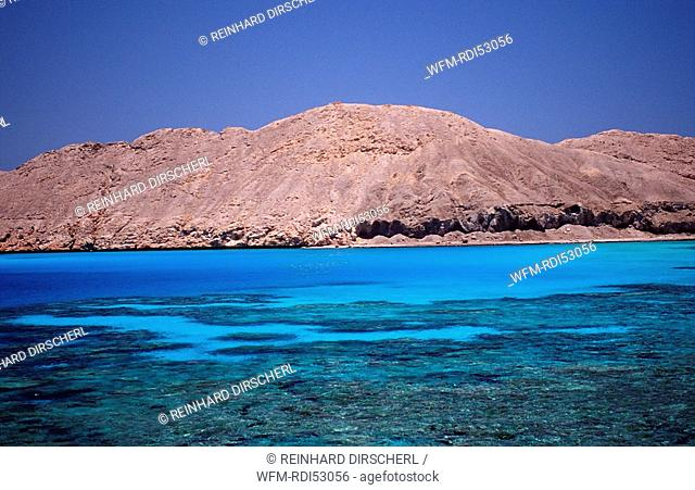 Zabargad Zabarghad, Zabargad Zabarghad Red Sea, Egypt