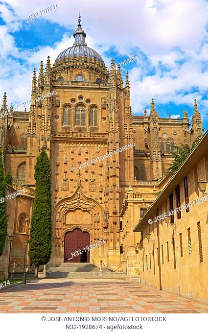 Cathedral, Salamanca, Old Cathedral, Via de la Plata, Silver Route, Castilla-Leon, Spain