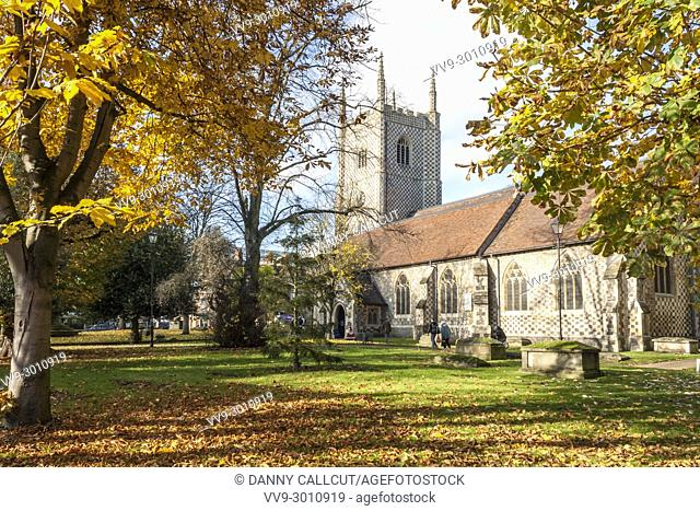 Reading Minster of St Mary the Virgin at St Mary's Butts, Reading, Berkshire, South East England, GB, UK