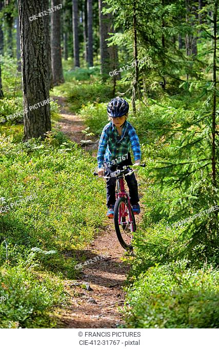 Boy riding bicycle on trail in woods