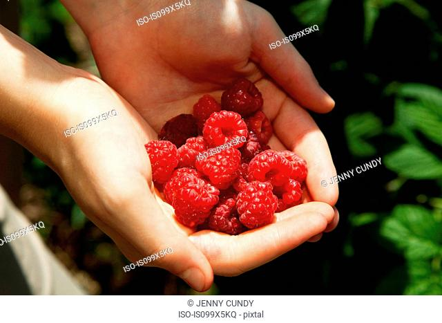 Woman holding fresh raspberries
