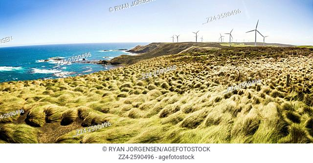 Vivid colourful panorama of green grass leading to a cliffside wind farm and sea landscape. Woolnorth in Tasmania Australia