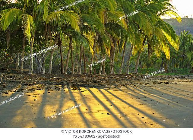 Black sand beach at Papagayo Bay