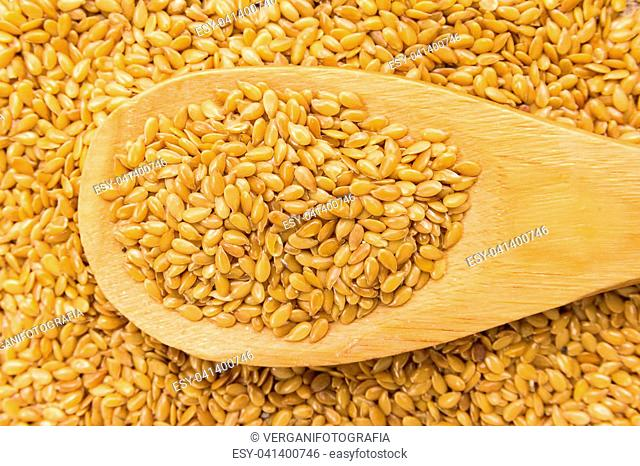 Linum usitatissimum is scientific name of Golden Flax seed. Also known as Linseed, Flaxseed and Common Flax. Grains in wooden spoon. Close up