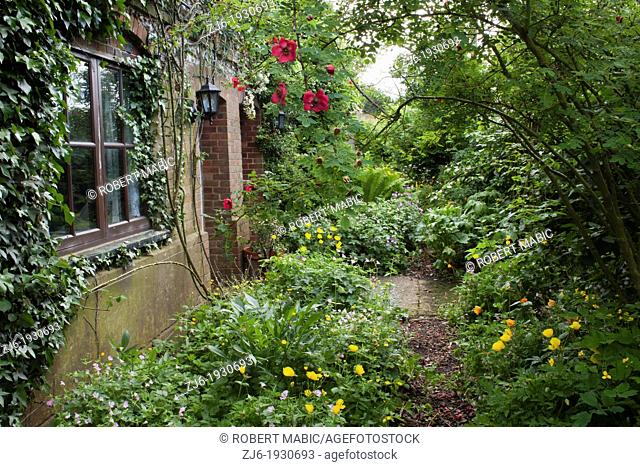 Cottage garden with entrance to the house and herbaceous borders, Kent England