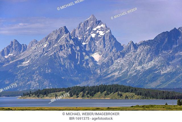 Willow Flats in front of Teton Range mountain chain with Mount Moran and Jackson Lake, Grand Teton National Park, Wyoming, USA, North America