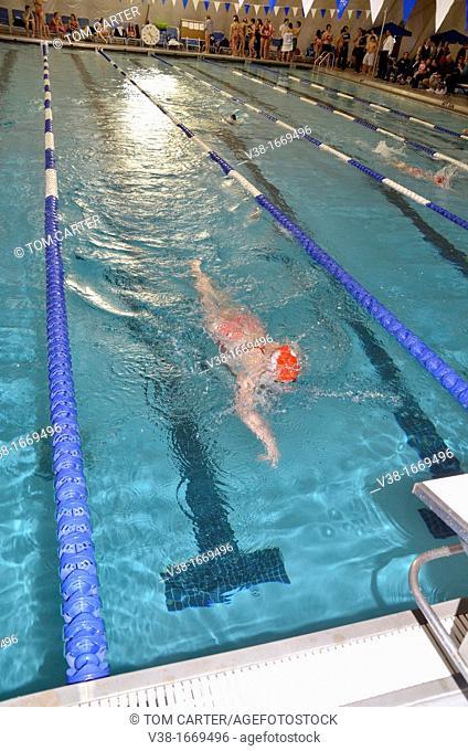Swimmer in a swim meet
