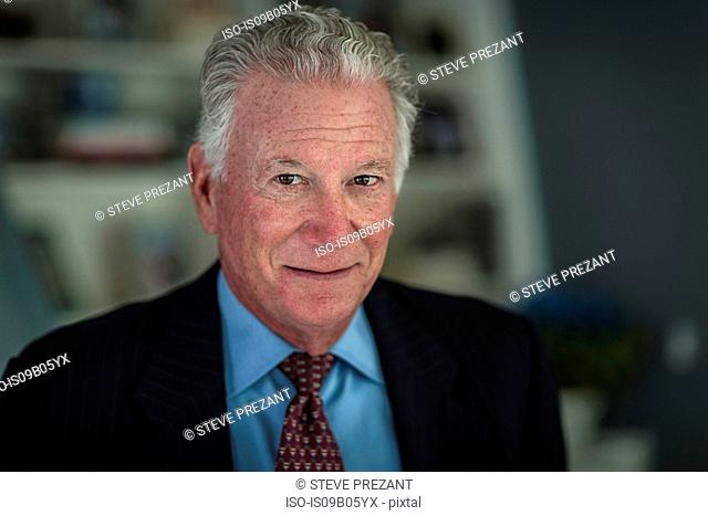 Portrait of grey haired senior businessman in office