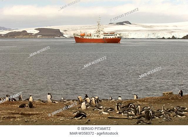 Antarctica, South Shetlands Islands, Aitcho Island, Antacrtic Drean ship and Gentoo Penguins