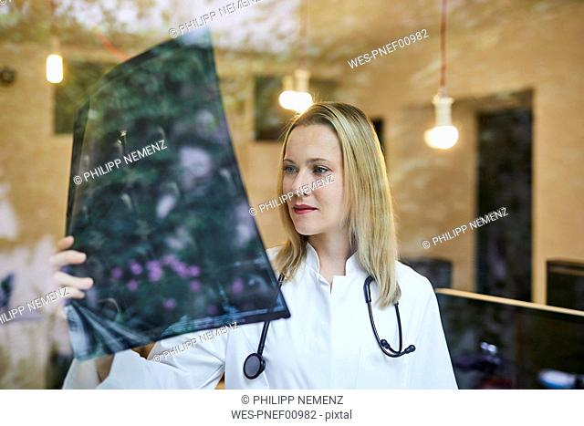 Female doctor looking at x-ray image behind windowpane