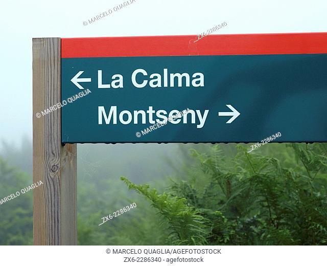 Sign post at Pla de la Calma plateau (1000 mts) on foggy summer day. Montseny Natural Park. Barcelona province, Catalonia, Spain
