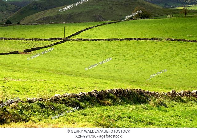 Landscape south of Buxton, with tree and stone walling, in the Peak district National Park, Derbyshire, England