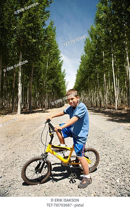 Boy 8-9 riding bike between poplar trees in tree farm