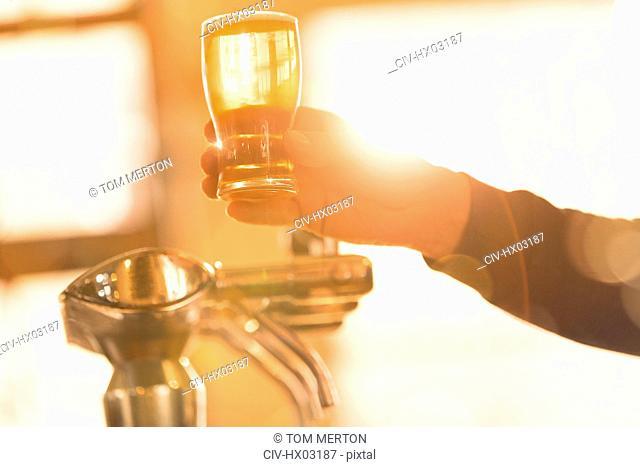 Bartender serving golden pint of beer at beer tap