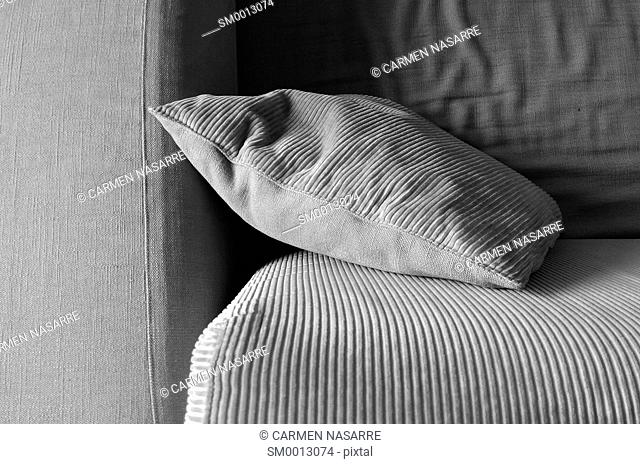 Cushion supported in an armchair