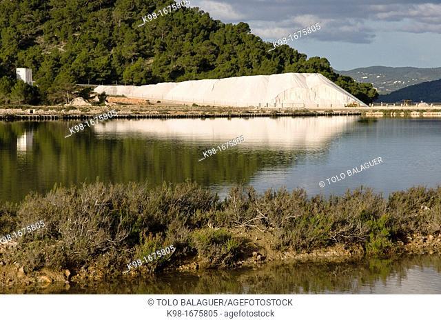 Natural Park of Ses Salines. Eivissa. Ibiza. Balearic islands. Spain