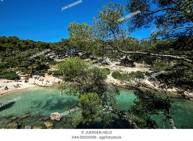France, Cassis, Provence, Port Miou, Calanques, Port Pin