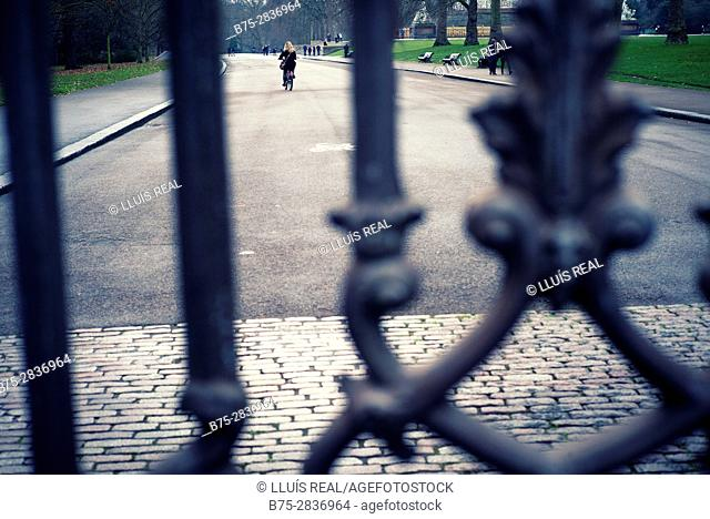 Iron gate. Kensington Gardens, City of Westminster, Kensington and Chelsea, London, England