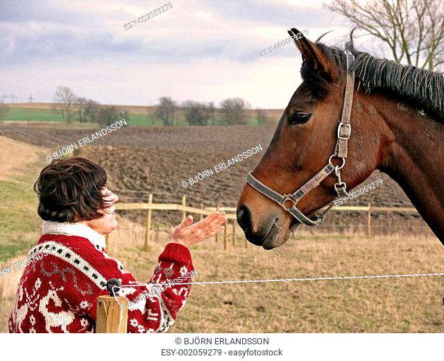 Talking To Horses
