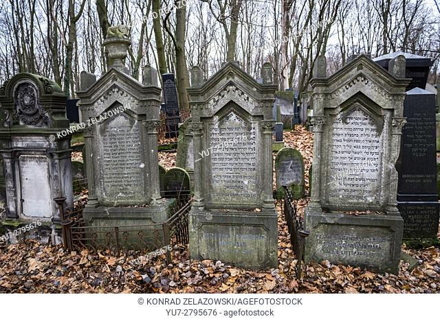 Old graves at Warsaw Jewish Cemetery is one of the largest Jewish cemeteries in Europe, at Okopowa Street in Warsaw, Poland