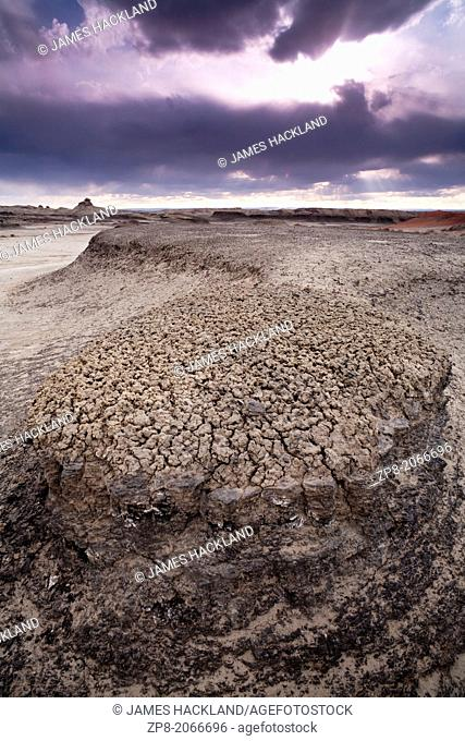 Strange formations found in the Bisti/De-Na-Zin Wilderness, New Mexico, USA