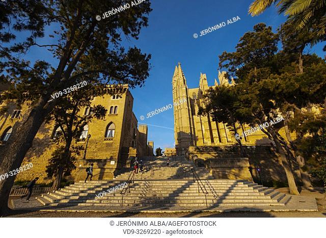La Seu Cathedral and Royal Palace of La Almudaina, Palma de Mallorca. Majorca, Balearic Islands, Spain Europe