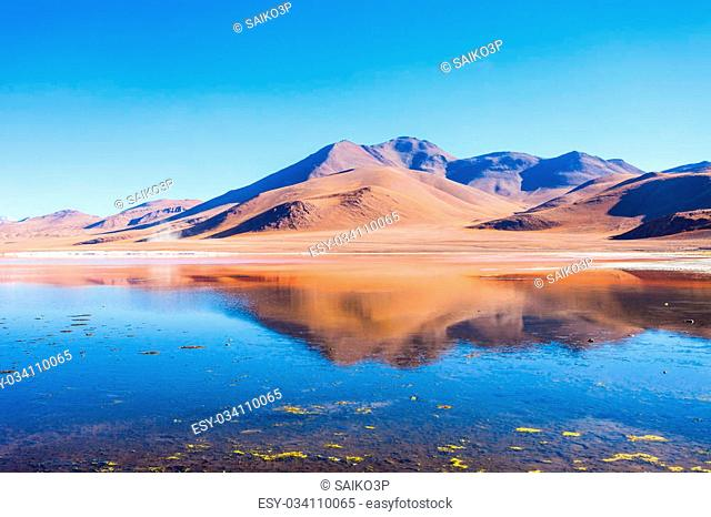 Laguna Colorada, means Red Lake is a shallow salt lake in the southwest of the Altiplano of Bolivia
