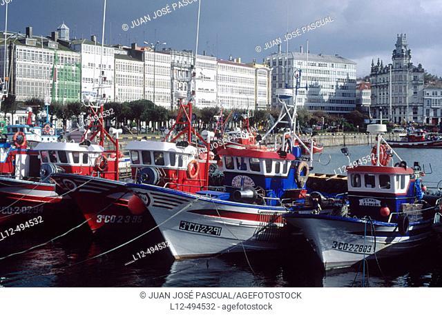 Fishing port, La Coruña. Galicia, Spain
