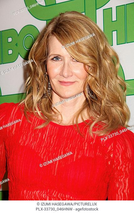 Laura Dern  01/06/2019 The 76th Annual Golden Globe Awards HBO After Party held at the Circa 55 Restaurant at The Beverly Hilton in Beverly Hills
