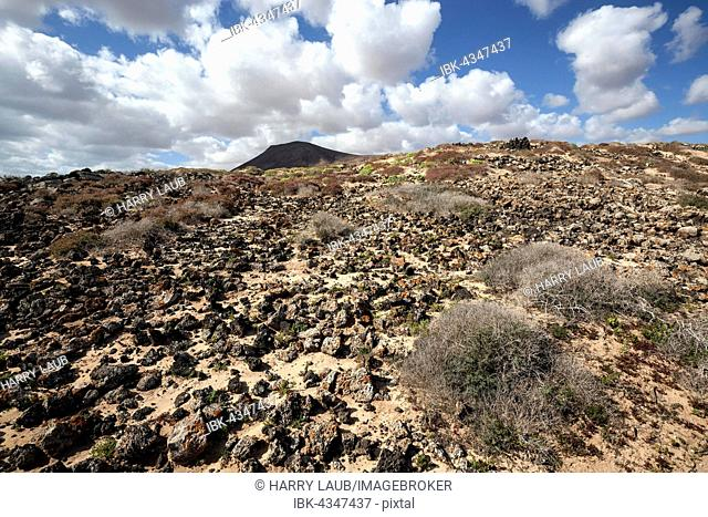 Barren landscape in the southern area of ??the Corralejo Natural Park, Fuerteventura, Canary Islands, Spain