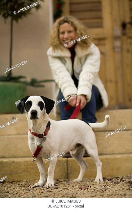 Woman sitting with dog on leash