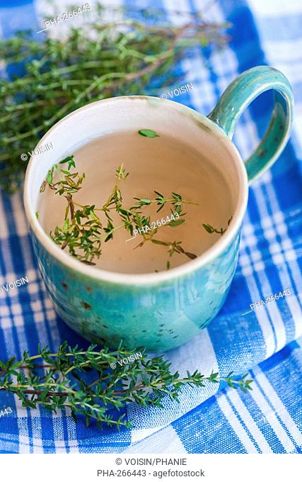 Herbal tea of thyme