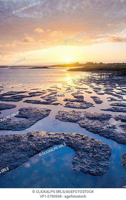 Carrasqueira, Alcacer do Sal, Setubal, Portugal. Sunrise over the low tide