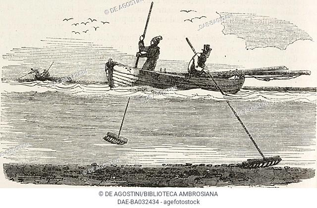 Oyster fishing using a rake, France, illustration from L'Illustration, Journal Universel, No 49, Volume 2, February 3, 1844