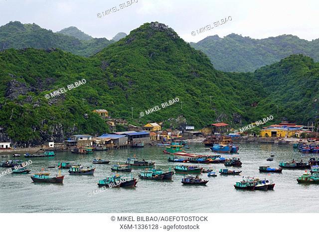 Boats in Cat Ba port  Ha Long Bay  Qung Ninh province, Vietnam