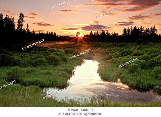 Sunset over Beaver Pond in Boreal Forest, Alberta, Canada