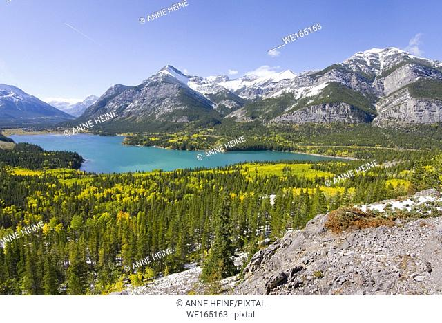 Turquoise Barrier Lake in fall surrounded by yellow aspen trees. Barrier Lake in Kananaskis Country, Rocky Mountains, Alberta, Canada