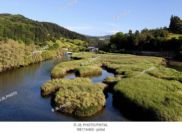 Santiago Stream  Tributary of the River Oria  Orio, Gipuzkoa, Basque Country  Spain  Europe