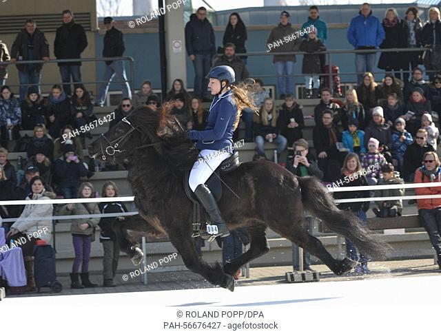Equestrian Sophie Veltmann in action on her horse during the Icehorse 2015, the European Championship of Iceland horses on ice, in Berlin, Germany, 7 March 2015