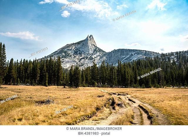Trail to Cathedral Lake, Cathedral Peak, Sierra Nevada, Yosemite National Park, California, USA