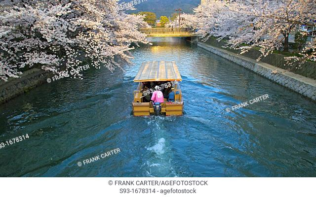 A tourist boat taking passengers on the canal beside Niomon dori to see cherry blossoms