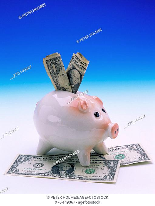 Dollars bills and piggy bank